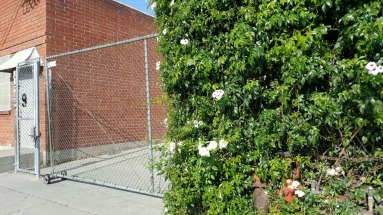 The front doors are hidden behind this gate and large hedge.